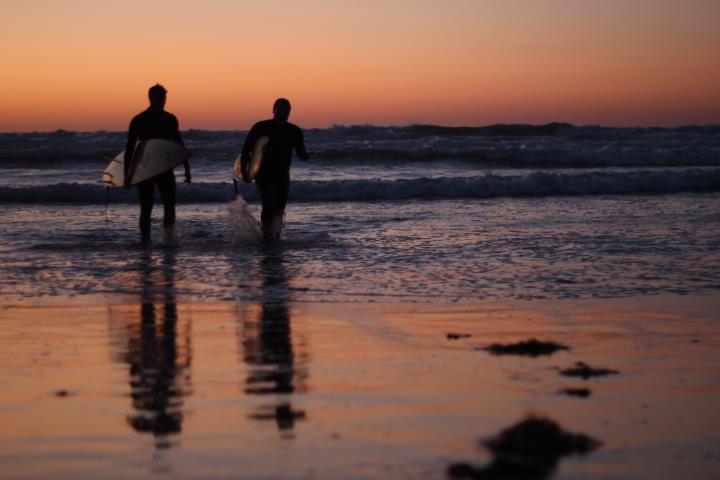 Surf Sven:Wilga